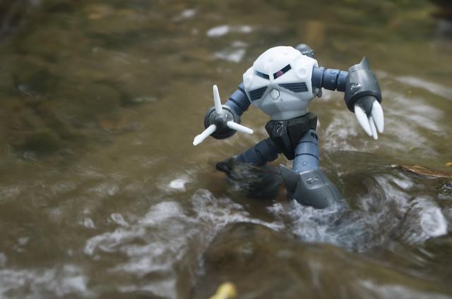 Z'gok goes upstream