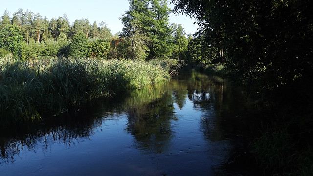 Merkys River (06)