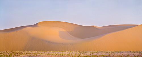 Swoopy Dune Pano | by Doha Sam