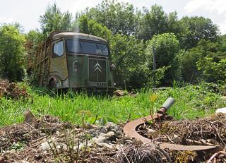 Citroen H-Van Horsebox   by Spottedlaurel