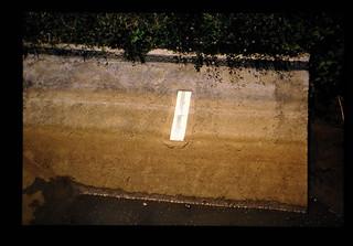 Staff Gauge In Tertiary Canal = 三次水路取り入れ口下流の量水標