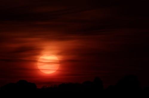 sunrise pentaxk5ii tamronaf70300mmf456ldmacro12 rodboroughcommon petermiles petermiles