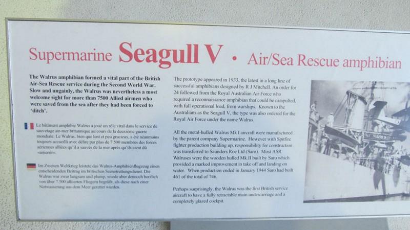 Supermarine Seagull V 5