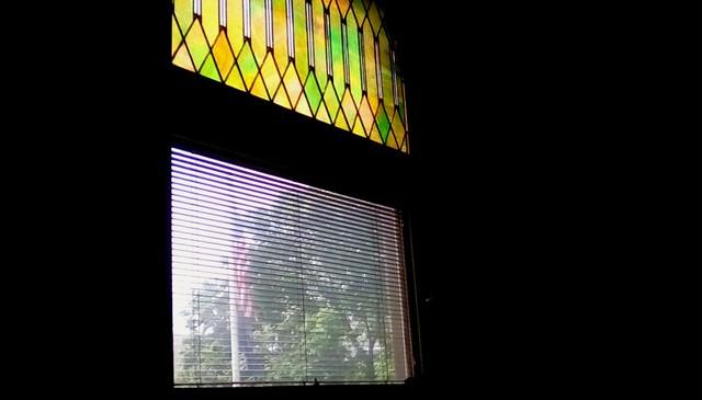 Flag through library window - HWW