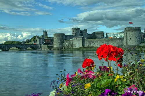 limerick shannon river countyshannon rose flowers water reflection kingjohnscastle kingjohn king john green red yellow purple blue sky clouds waterreflection canon slr eos hdr waterscape landscape architecture tower bridge outdoor ireland irish country waterside riverside stone flag european celtic