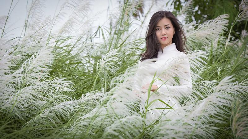 co lau duoi ga - Linh Van Dinh (10)