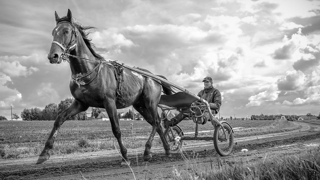 Stal Markhove - H 16-9 in B&W
