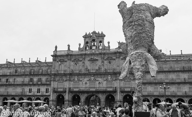 Elefante en la Plaza Mayor de Salamanca