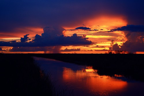 sunset afterglow blue glow reflection river cloudscape cloudburst shadow calm serene nature beauty natural hometown florida unitedstates usa floridaeverglades riverofgrass open space colorful angle dramatic composition summer2017 72817 outdoor sky distort southflorida broward coralspringsflorida dusk cloud water rainstorm levels heatwaves distortion strong intenseuplight landscapephotography artisticsunsetphotography cloudscapephotography weatherphotography field landscape rain coast shore backlit tryintoreasonwithhurricaneseason rainyseason darkskies skybeautyinthewild turbulent thunder redpool red gold redpoolrain drama sunrays5