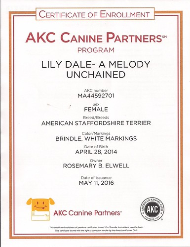 AKC Canine Partners   by RBElwell