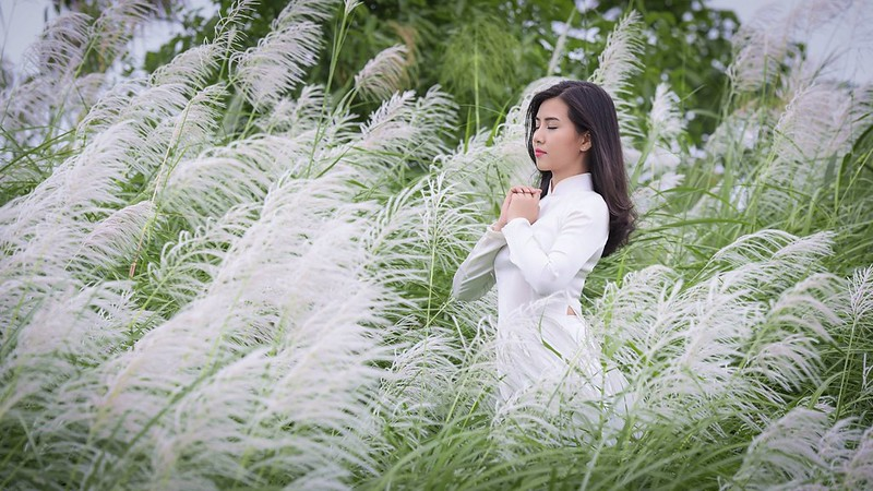 co lau duoi ga - Linh Van Dinh (11)