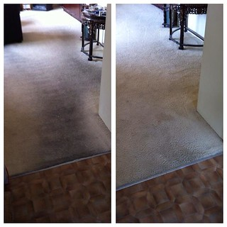 CarpetCleaning | by michaelizhik