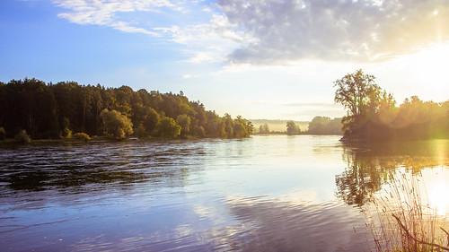 myswitzerland river thur rhein flaach nikon tamron d7200 sunrise kantonzürich nebel sonne wather europa tamronaf16300mmf3563dillvcpzdmacrob016