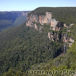 Viajefilos en Australia. Blue Mountains 063