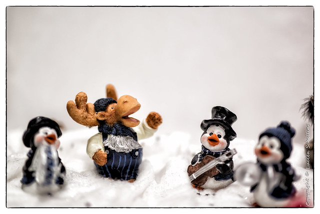 The reindeer and the penguins