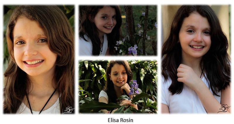 Composite Elisa
