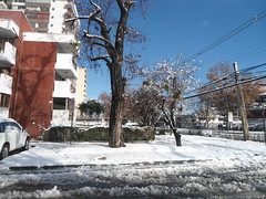 Winter Wonderland, Calle Wisconsin, Vitacura, Santiago 2017, Chile - www.meEncantaViajar.com