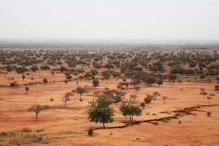 Landscape of Sahel | by CIFOR