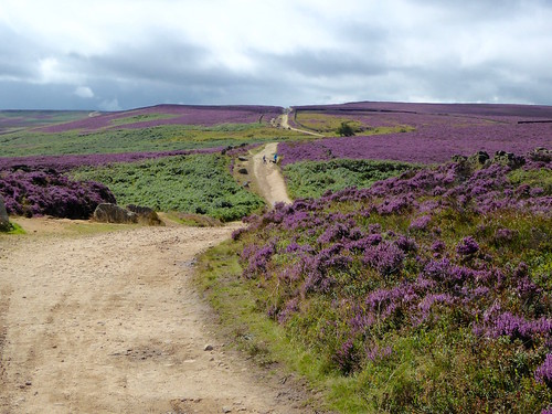 The old turnpike Sheffield to Bamford walk