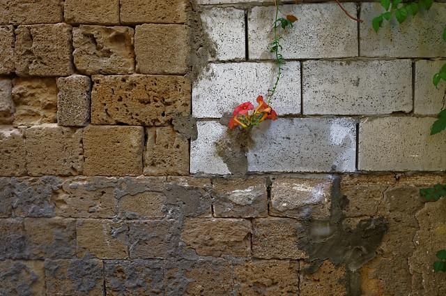 Tyr (Liban) la vieille ville