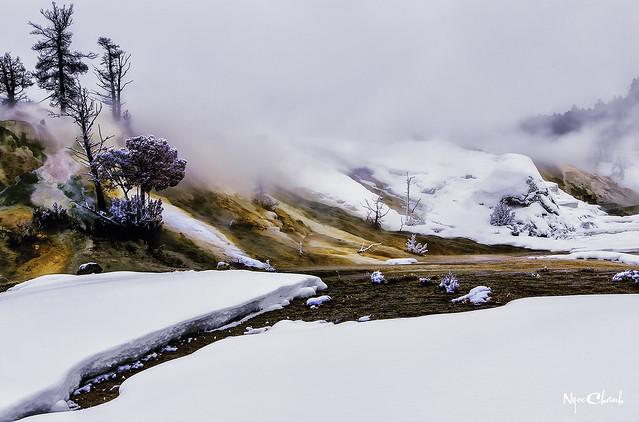 Yellowstone National Park, Utah