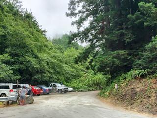 Purisima Creek Redwoods/Parking Lot   by Dipika Bhattacharya