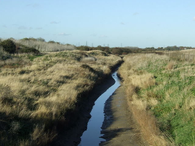 East Tilbury marshes