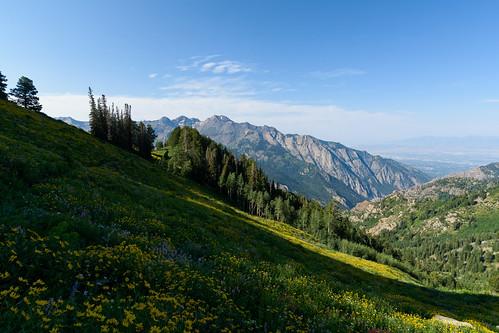utah uintawasatchcachenationalforest bigcottonwoodcanyon mountolympuswilderness nikond7100 hiking