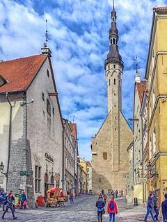 Tallinn Estonia IMG_0996 copy 2