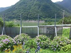 駅からもわずかに若郷湖が見えるが、防風壁に遮られて見通しは良くない