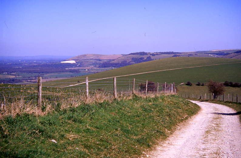 Ridge View 6
