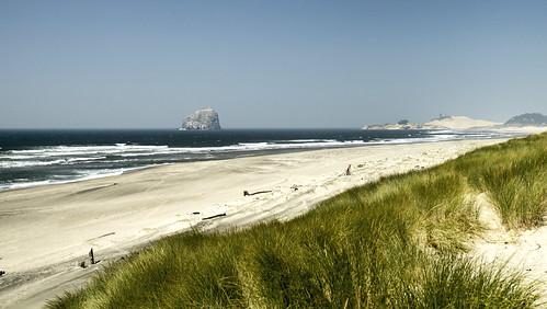 sand dunes ocean waves grass wind rock drift wood haystack cape kiwanda oregon park state straub bob