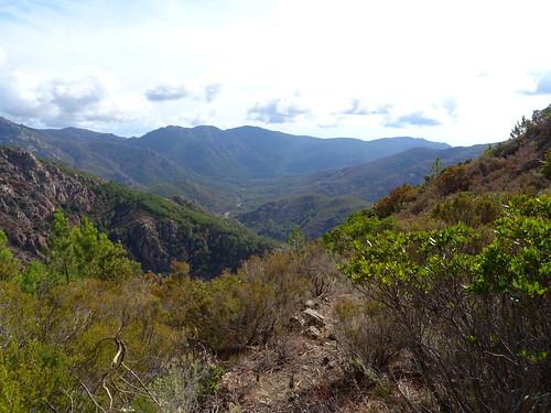 Bocca di Ricu : la vallée du Cavu vers l'aval