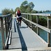 Hiking Trail Bridge, Rheindelta Lagune, Hard, Austria