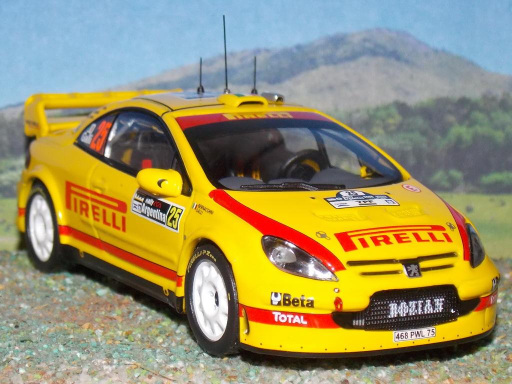 Peugeot 307 WRC – Argentina 2006