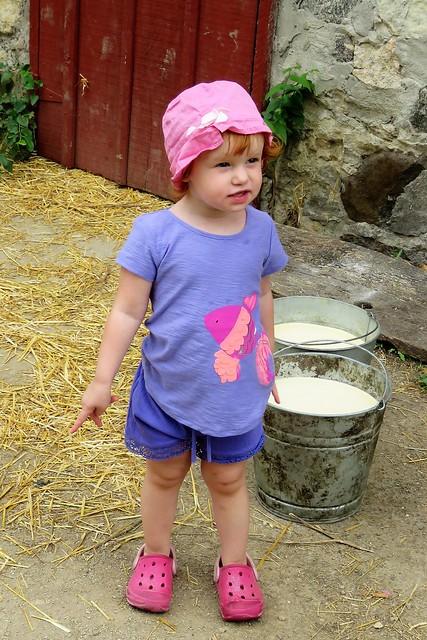 The Little Milk Maiden