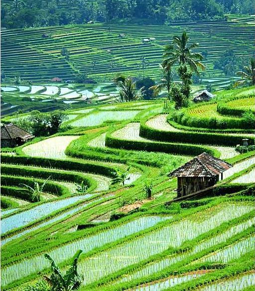 Foto Pemandangan Alam Terindah Di Indonesia A Photo On Flickriver