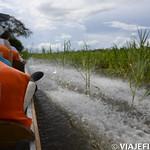Viajefilos en la Amazonia, Peru 114
