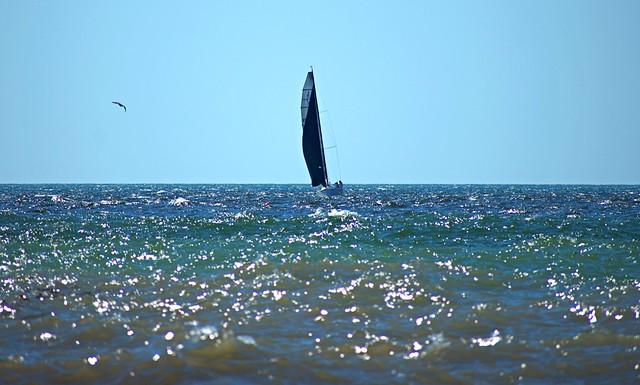Sailing on Saturday