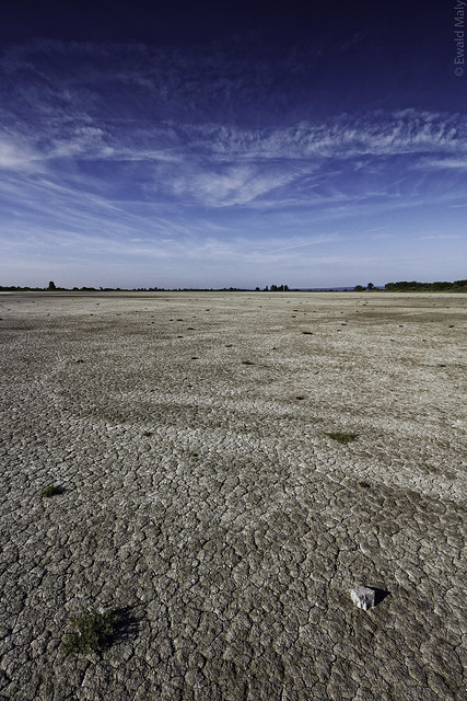 Oberer Stinkersee at Apetlon/Burgenland (dried out)