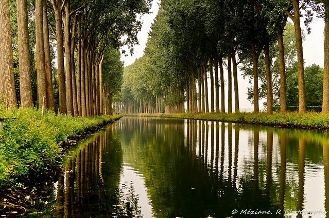 Estaimpuis ( Belgique )