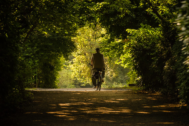 cycling into the light
