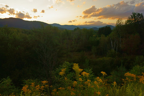 sunset vista flowers mountains whitemountains mountwashington clouds goldenrod forest newhampshire landscape