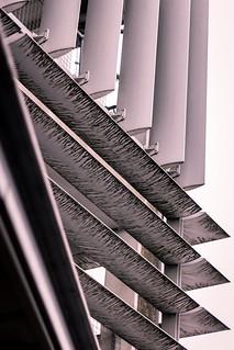 Lines Aplenty | by Sir Trev