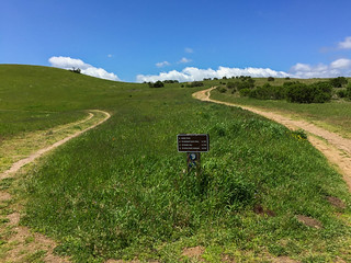 Russian Ridge/Junction of Ridge Trail and Ancient Oaks Trail | by Dipika Bhattacharya