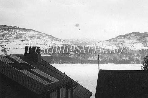 Voss Bergen distriktet (1203)
