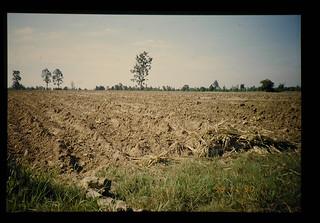 After Land Preparation = 整地後の畑
