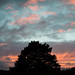 Dramatic Morning Summer Sky