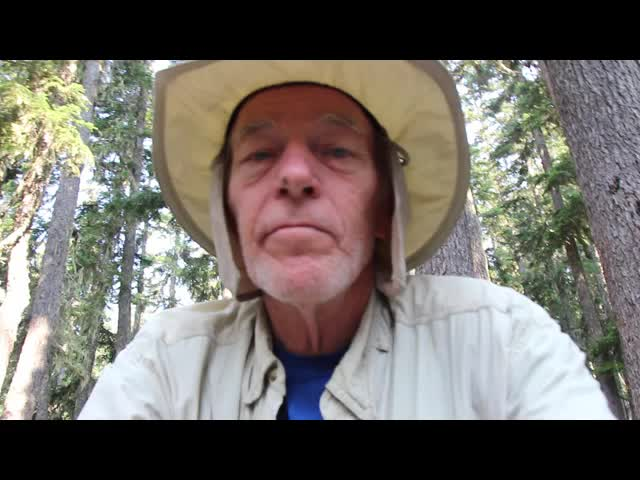 0849 Video of super-annoying Deer Flies buzzing around my face on the Buck Creek Trail