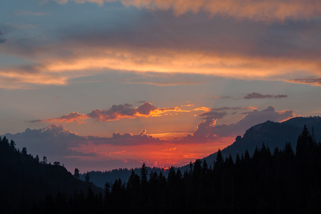 Last light in Sequoia